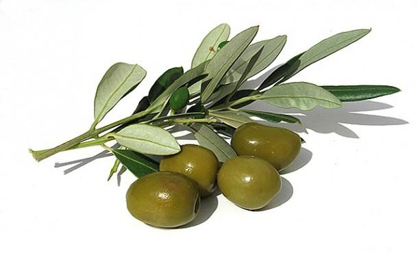 Hương olive